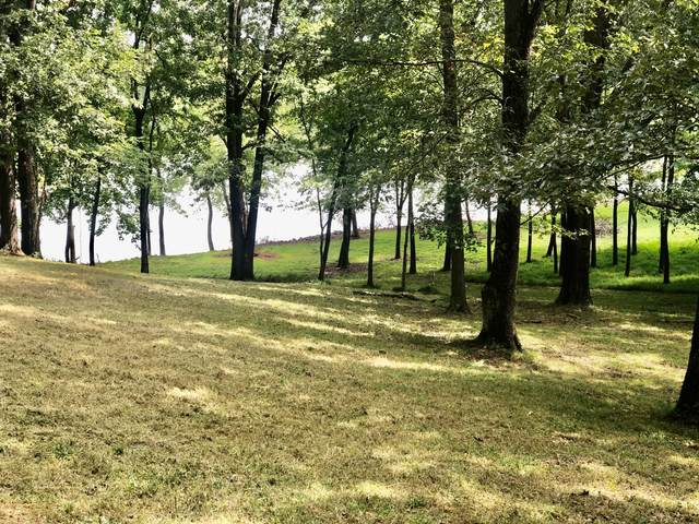 2 Hickman Shores Rd, Dover, TN 37058 (MLS #RTC2189615) :: Wages Realty Partners
