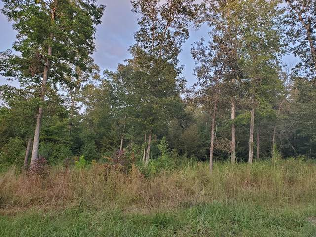 2465 Brodies Landing Rd, Parsons, TN 38363 (MLS #RTC2189769) :: Your Perfect Property Team powered by Clarksville.com Realty
