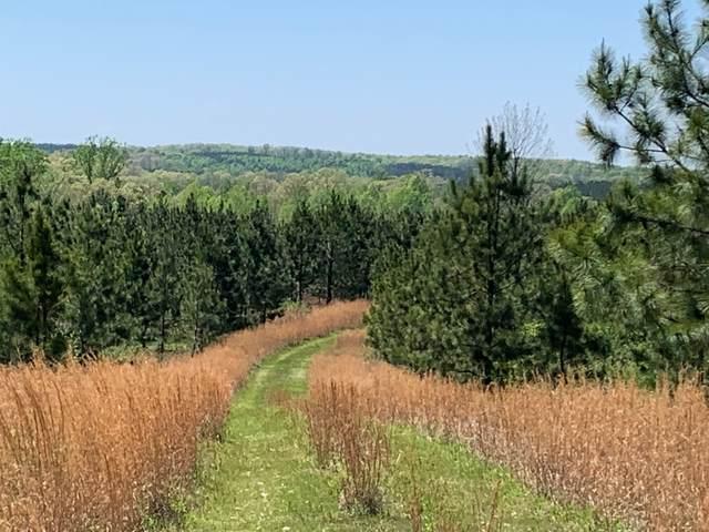 0 Lick Creek Road, Dover, TN 37058 (MLS #RTC2189809) :: Village Real Estate