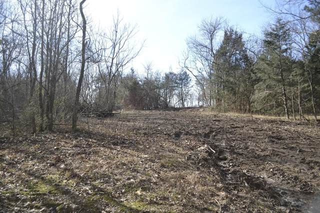 6000 Costello Farm Ln, Thompsons Station, TN 37179 (MLS #RTC2190113) :: CityLiving Group
