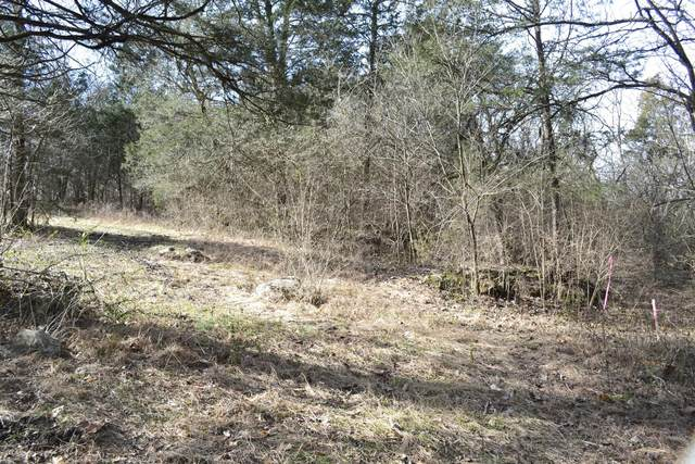0 Costello Farm Ln, Thompsons Station, TN 37179 (MLS #RTC2190119) :: CityLiving Group