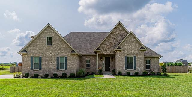 4452 Albright Rd, Clarksville, TN 37043 (MLS #RTC2190586) :: Village Real Estate