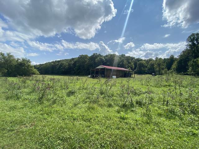 3641 Kennedy Creek Rd, Auburntown, TN 37016 (MLS #RTC2190879) :: Village Real Estate