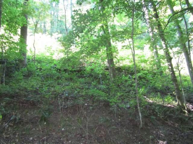 1 .17Ac Austin Lake Rd, Baxter, TN 38544 (MLS #RTC2190923) :: Maples Realty and Auction Co.