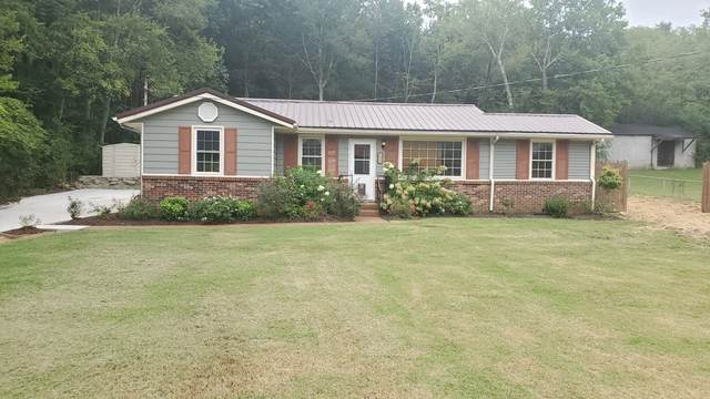 193 Old Carters Creek Pike, Franklin, TN 37064 (MLS #RTC2190971) :: Hannah Price Team