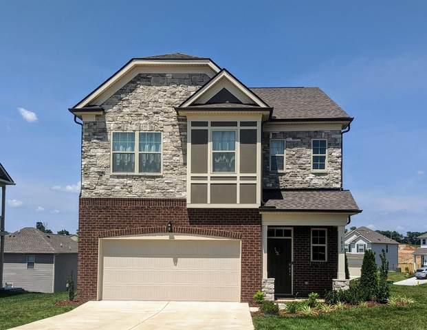 1017 Lonergan Cir, Spring Hill, TN 37174 (MLS #RTC2191362) :: Fridrich & Clark Realty, LLC