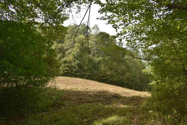0 Skelton Ln, Pleasant Shade, TN 37145 (MLS #RTC2192199) :: Nashville on the Move