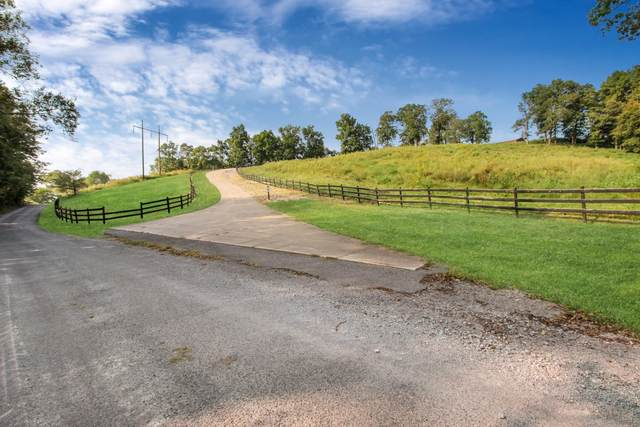 206 Hayes Fork Creek Rd, Dover, TN 37058 (MLS #RTC2192401) :: HALO Realty