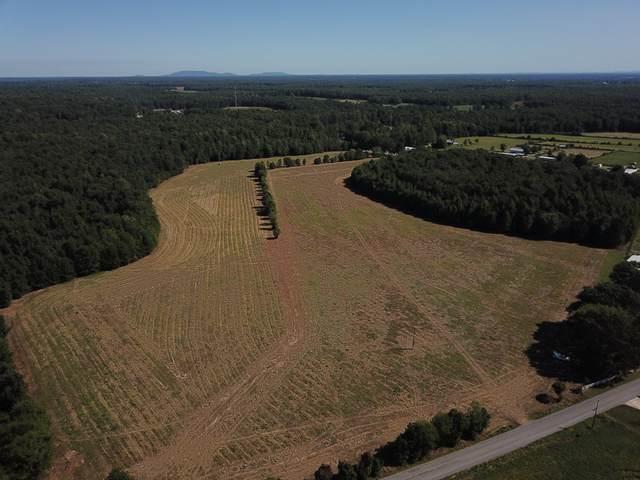 0 Ferrells Loop Rd, Beechgrove, TN 37018 (MLS #RTC2192795) :: Village Real Estate
