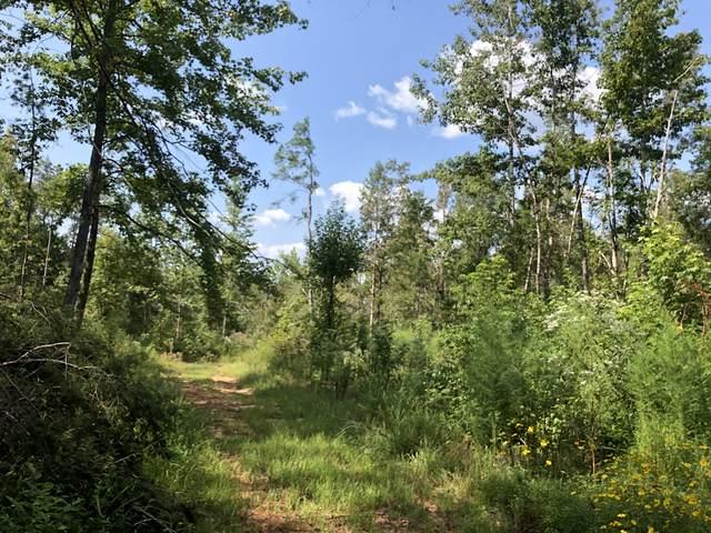 1996 Sweet Lips Rd, Finger, TN 38334 (MLS #RTC2192893) :: Stormberg Real Estate Group
