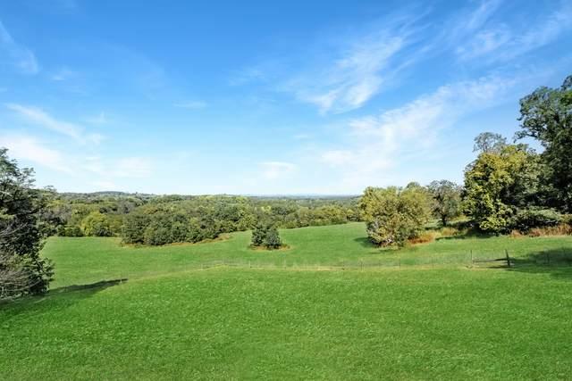 1979 Phinney Murphy Rd, Culleoka, TN 38451 (MLS #RTC2193059) :: Village Real Estate
