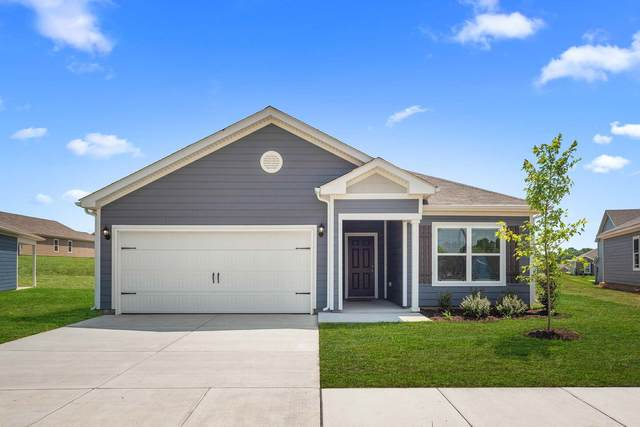 3005 Apiary Ct, Columbia, TN 38401 (MLS #RTC2193419) :: Berkshire Hathaway HomeServices Woodmont Realty
