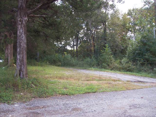 0 Highway 100, Centerville, TN 37033 (MLS #RTC2193693) :: RE/MAX Homes And Estates