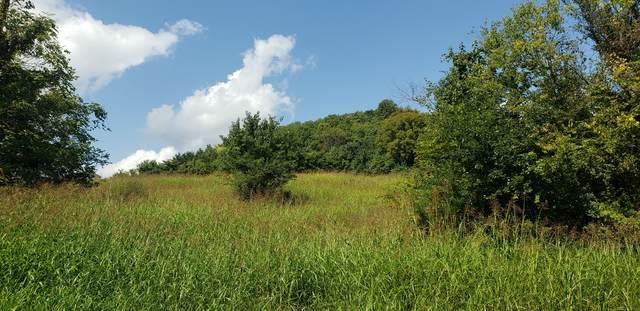 0 Happy Valley Rd, Bell Buckle, TN 37020 (MLS #RTC2193765) :: DeSelms Real Estate