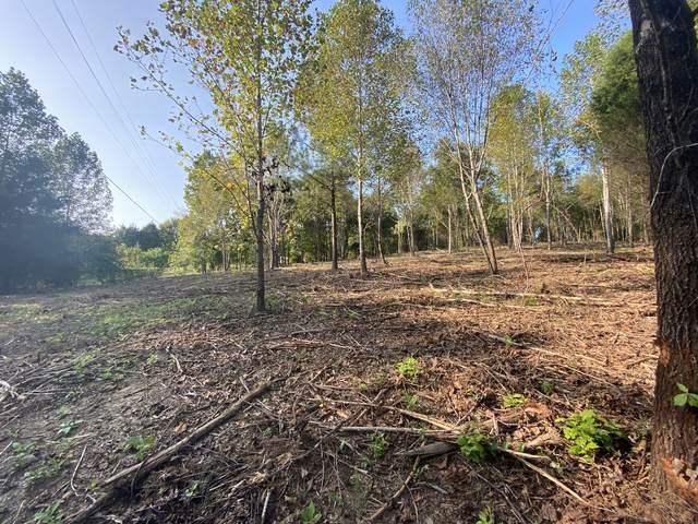 137 Swift Ln, Cunningham, TN 37052 (MLS #RTC2194029) :: RE/MAX Homes And Estates