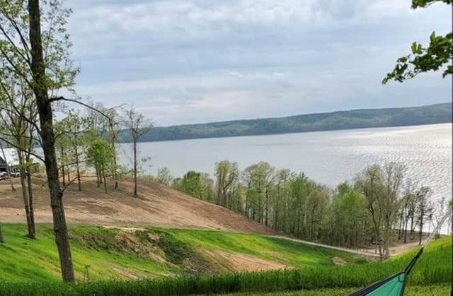 38 River Ln, Waverly, TN 37185 (MLS #RTC2194228) :: Your Perfect Property Team powered by Clarksville.com Realty