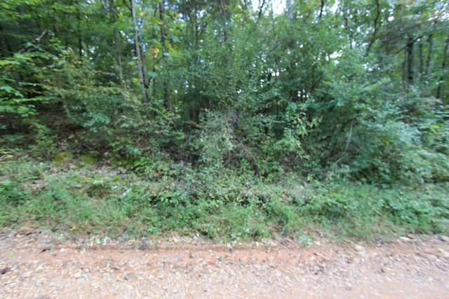 1 Apollo Drive, Bumpus Mills, TN 37028 (MLS #RTC2195006) :: John Jones Real Estate LLC