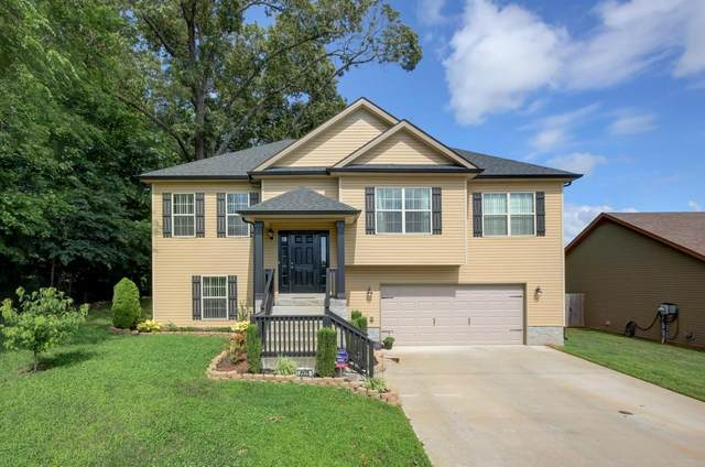 2225 Trophy Trace, Clarksville, TN 37040 (MLS #RTC2195064) :: RE/MAX Homes And Estates