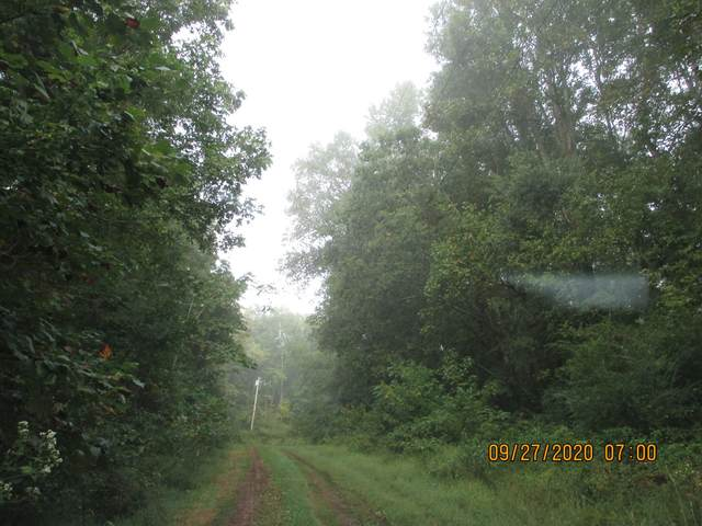 196 Petty Hollow Road, Prospect, TN 38477 (MLS #RTC2195105) :: Village Real Estate