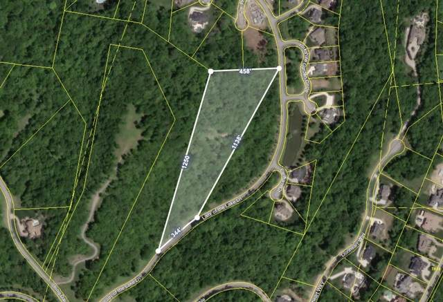 331 Lady Of The Lake Lane, Franklin, TN 37067 (MLS #RTC2195647) :: Village Real Estate