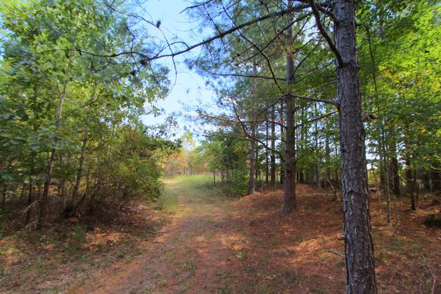 0 Indian Creek Rd, Mc Ewen, TN 37101 (MLS #RTC2196227) :: Your Perfect Property Team powered by Clarksville.com Realty