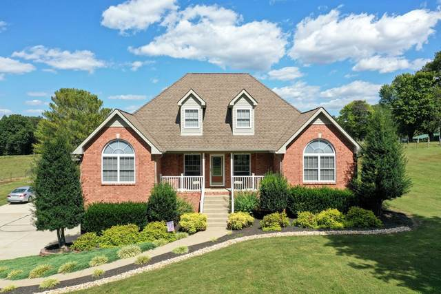 1055 Jim Read Rd, Chapmansboro, TN 37035 (MLS #RTC2196548) :: Village Real Estate