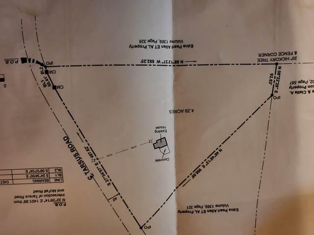 4226 Tarsus Rd, Palmyra, TN 37142 (MLS #RTC2197034) :: Cory Real Estate Services