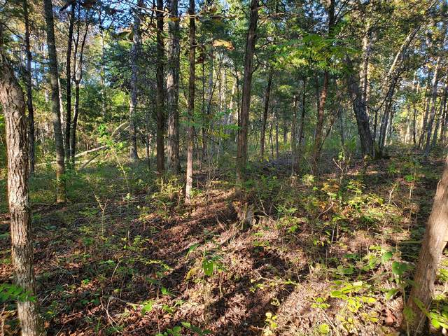 0 N Of South Berlin Rd, Lewisburg, TN 37091 (MLS #RTC2197542) :: Village Real Estate