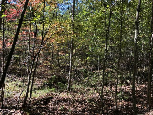 0 Till Rd, Hohenwald, TN 38462 (MLS #RTC2198147) :: Village Real Estate