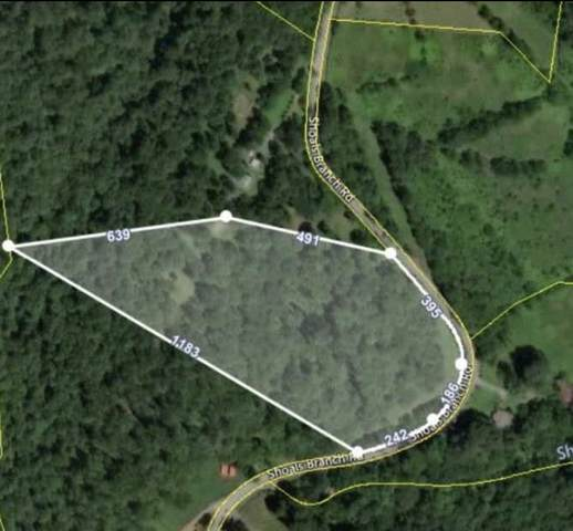 0 Shoals Br Rd, Primm Springs, TN 38476 (MLS #RTC2198157) :: Village Real Estate