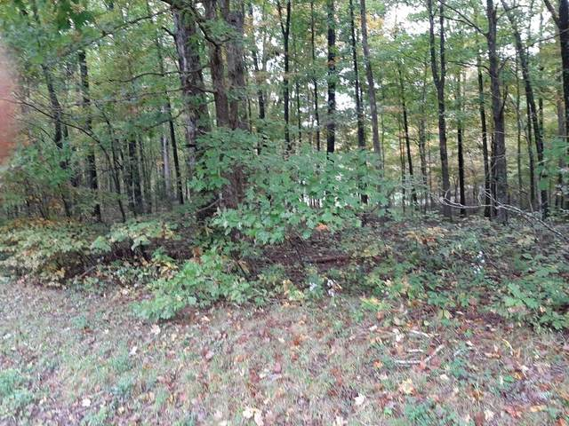 0 Northcutts Cv Rd, Beersheba Springs, TN 37305 (MLS #RTC2199869) :: Michelle Strong