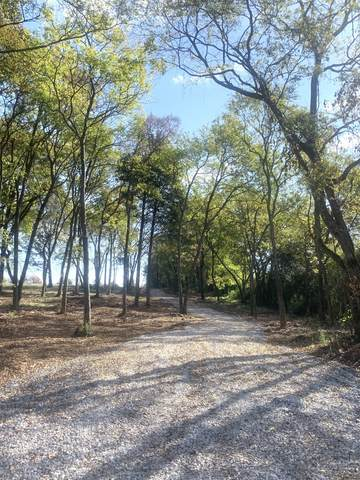 1370 Littleton Ranch Rd, Castalian Springs, TN 37031 (MLS #RTC2200110) :: Nashville on the Move