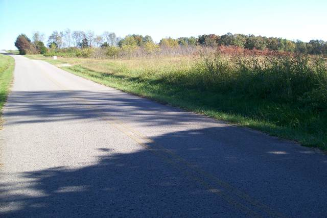 1305 Bill Fuson Road, Mc Minnville, TN 37110 (MLS #RTC2200351) :: Adcock & Co. Real Estate