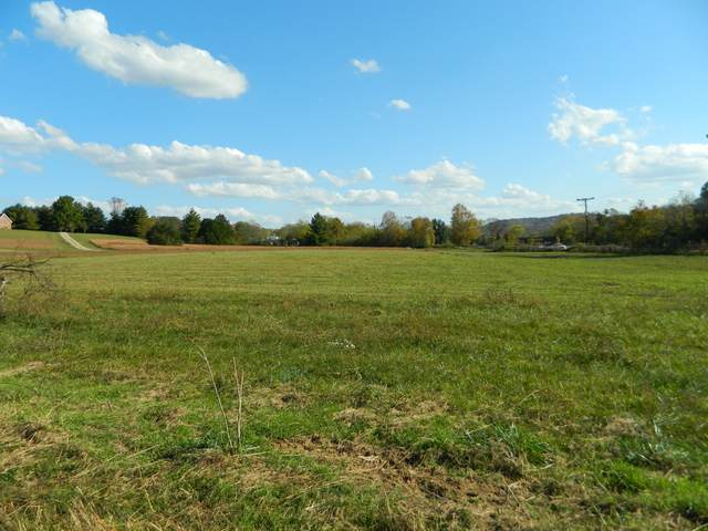0 Awesome Ave, Cottontown, TN 37048 (MLS #RTC2200665) :: CityLiving Group