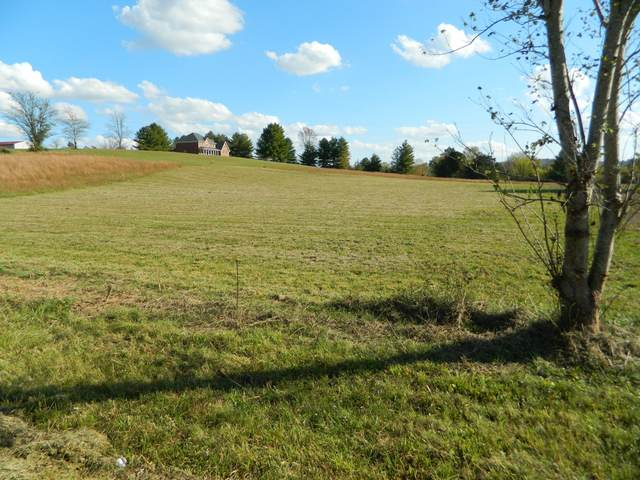 0 Awesome Ave, Cottontown, TN 37048 (MLS #RTC2200674) :: The Adams Group