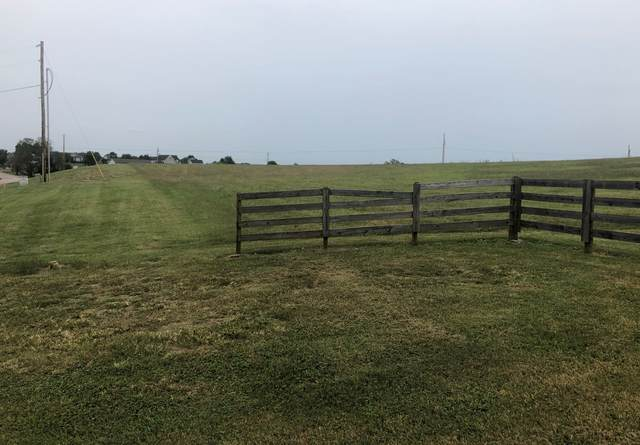 2194 Clara Mathis Rd, Spring Hill, TN 37174 (MLS #RTC2200769) :: FYKES Realty Group