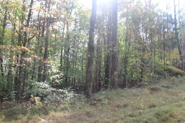 0 Saline Trail N, Bumpus Mills, TN 37028 (MLS #RTC2201263) :: Kimberly Harris Homes
