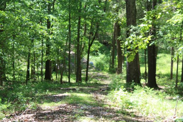 1 Grices Creek Road, Cumberland City, TN 37050 (MLS #RTC2201547) :: Village Real Estate