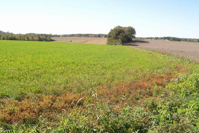 840 Horton Rd, Quebeck, TN 38579 (MLS #RTC2201549) :: Maples Realty and Auction Co.