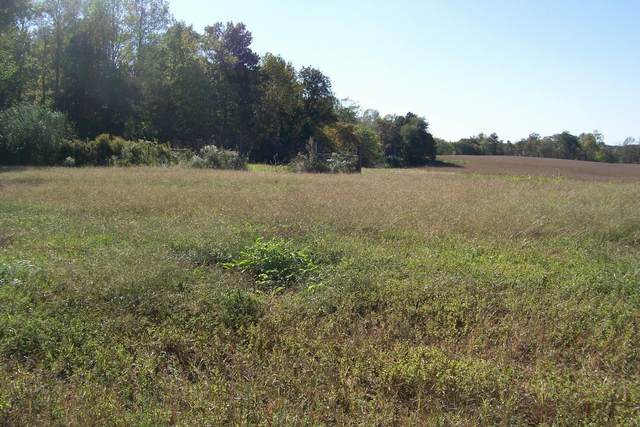 840 Horton, Quebeck, TN 38579 (MLS #RTC2201553) :: Maples Realty and Auction Co.