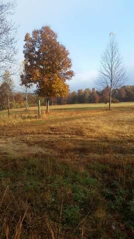 221 Brook Ln, Lawrenceburg, TN 38464 (MLS #RTC2202389) :: Village Real Estate
