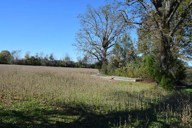 1548 Matts Hollow Rd, Manchester, TN 37355 (MLS #RTC2203632) :: Village Real Estate