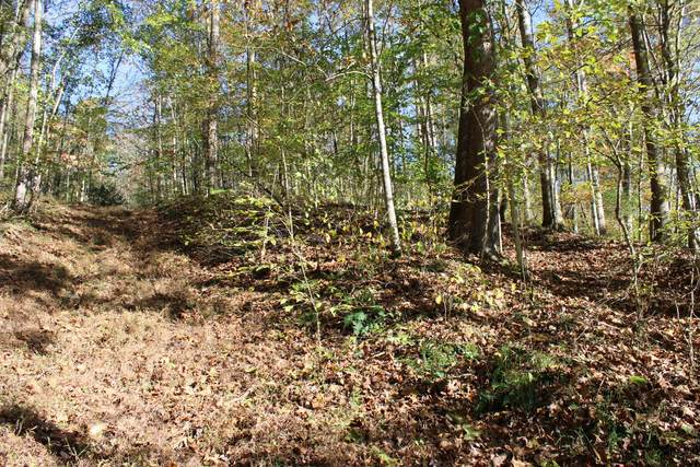 0 Kristin Dr, Centerville, TN 37033 (MLS #RTC2203661) :: Maples Realty and Auction Co.