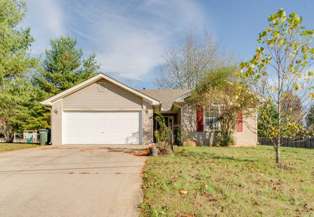 113 Patana Dr, White House, TN 37188 (MLS #RTC2203978) :: Village Real Estate