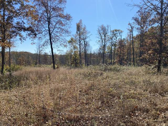 0 Bandy Rd, Ashland City, TN 37015 (MLS #RTC2204327) :: The Group Campbell
