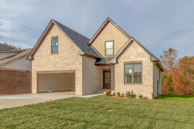 133 Cottage Ln, Clarksville, TN 37043 (MLS #RTC2204837) :: Fridrich & Clark Realty, LLC