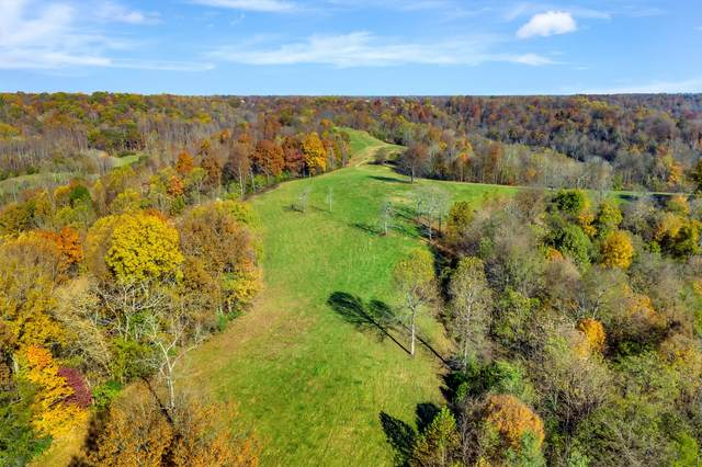 0 Buttermilk Hollow Rd., Bethpage, TN 37022 (MLS #RTC2205491) :: Adcock & Co. Real Estate