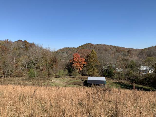 3524 Wayland Springs Rd, Iron City, TN 38463 (MLS #RTC2206374) :: RE/MAX Homes And Estates