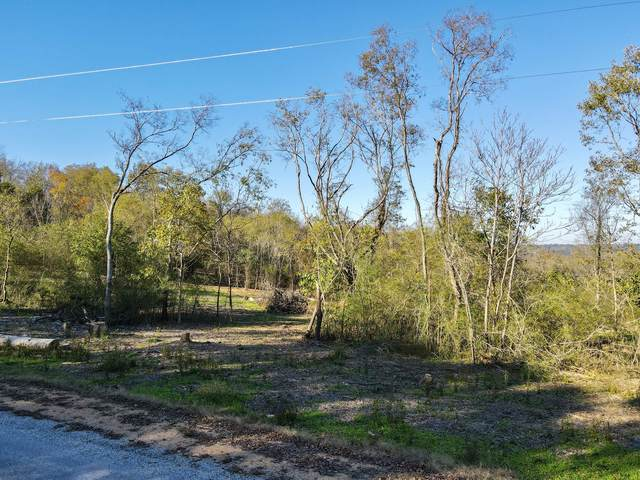 0 Stephens Rd, Columbia, TN 38401 (MLS #RTC2208056) :: Village Real Estate