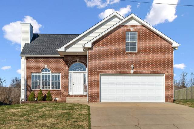 262 Harold Dr, Clarksville, TN 37040 (MLS #RTC2208718) :: Kenny Stephens Team